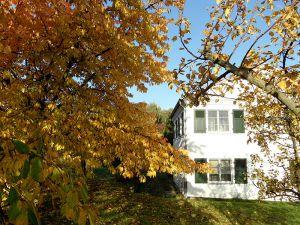 Herbst-am-Seehaus